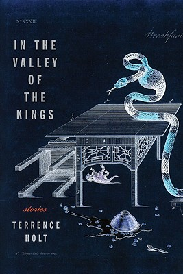 Terrence Holt cover In the Valley of the Kings